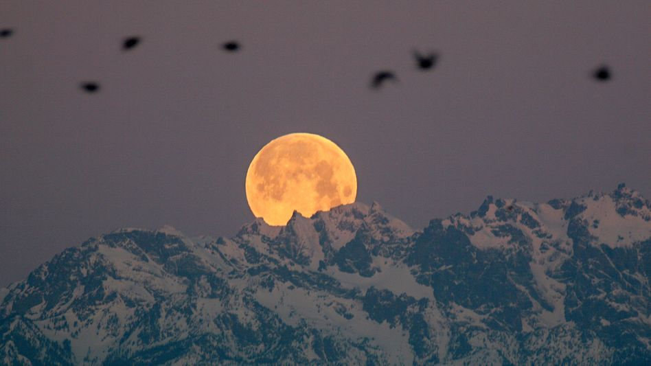 Mond bleibt fernes Ziel (hier im US-Staat Washington, Januar 2008): Mission zurückgestellt