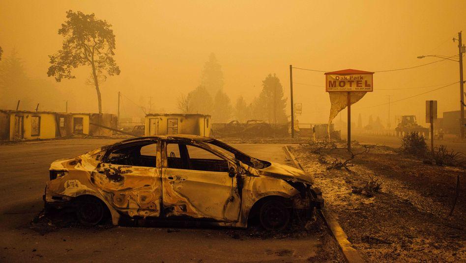Vom Feuer verwüsteter Ort in Oregon
