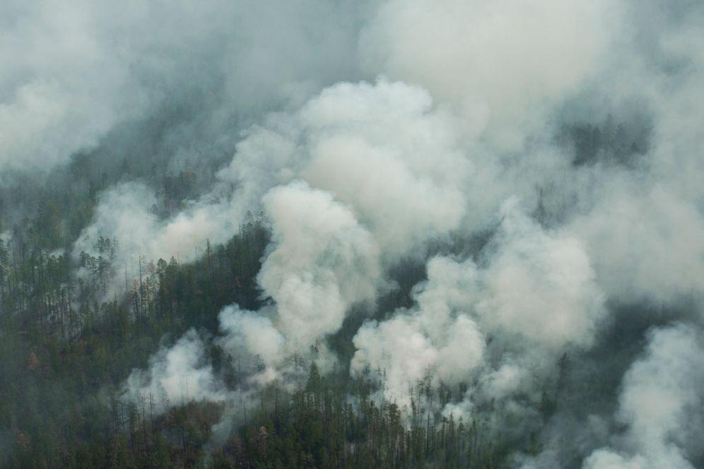 A forest fire near Yert