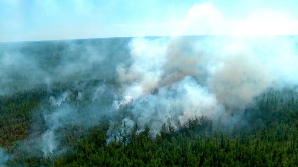 Rauchwolken steigen aus einem Wald in Jakutsk auf