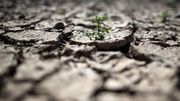 Einem Viertel der Weltbevölkerung droht Wasserknappheit
