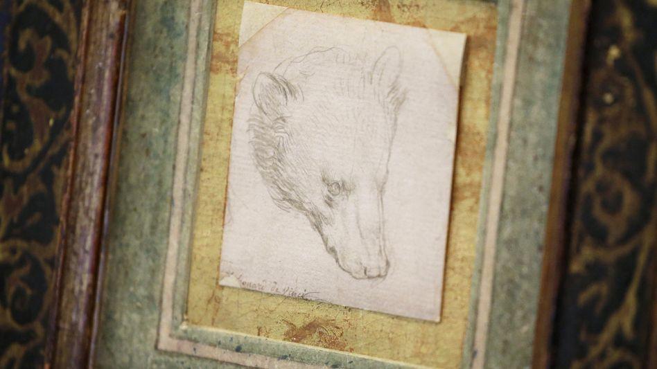 Zeichnung eines Bärenkopfs von Leonardo da Vinci