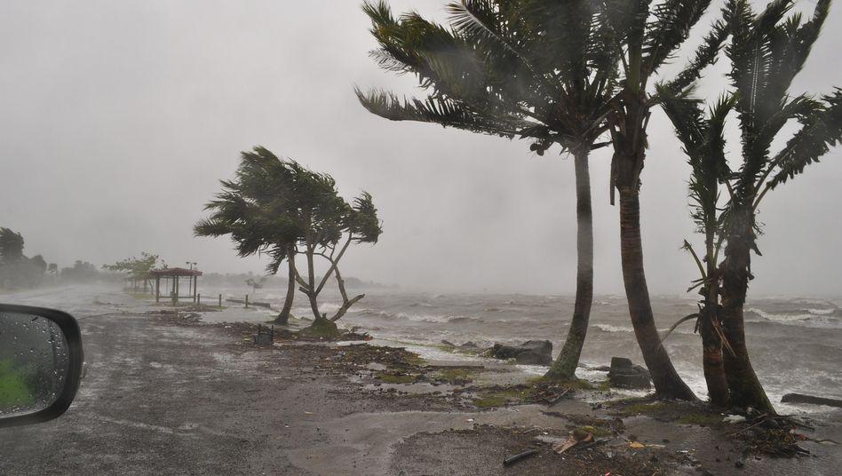 Zyklon auf den Fidschis: Einer der schlimmsten Stürme der letzten 20 Jahre
