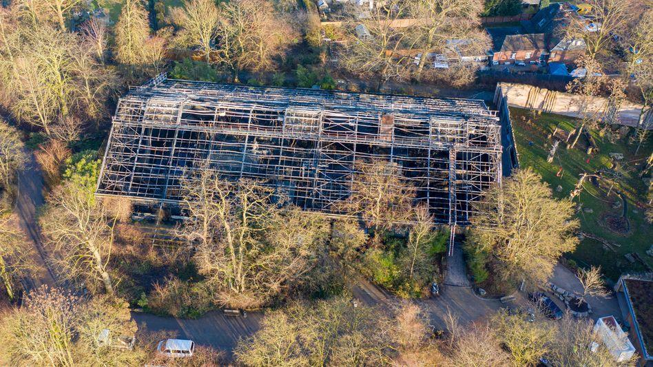 Zerstörtes Affenhaus im Krefelder Zoo: Fünf Laternen, ein Großbrand