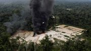 Brasilien entlässt Umweltbeamte