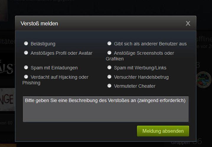 Meldefenster für Steam-Profile