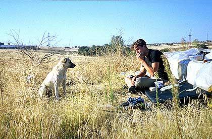 Cave canem: Nicht alle Hunde auf der Tour waren so freundlich wie dieser - bei manchen half nur Pfefferspray.