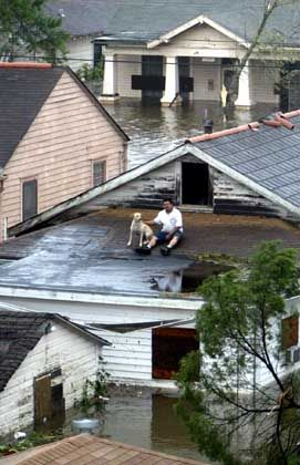 A man and his dog wait to be rescued from the roof of their New Orleans home.