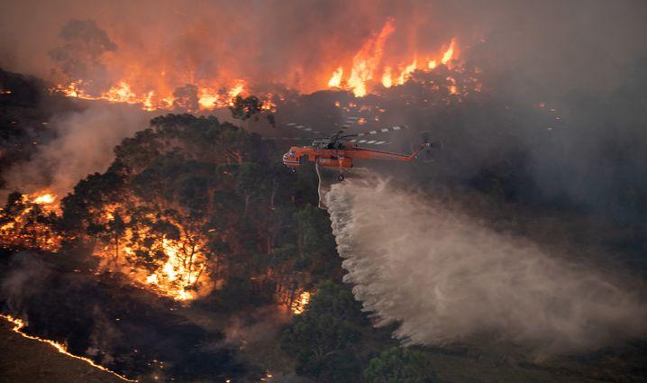 dpatopbilder - HANDOUT - 31.12.2019, Australien, Bairnsdale: Ein Löschhubschrauber fliegt über ein Buschfeuer in der Nähe von Bairnsdale in der Region East Gippsland Shire im Bundesstaat Victoria. Die Buschbrände im Südosten Australiens geraten immer mehr außer Kontrolle und haben weitere Todesopfer gefordert. Foto: ---/STATE GOVERNMENT OF VICTORIA/AAP/dpa - ACHTUNG: Nur zur redaktionellen Verwendung im Zusammenhang mit der aktuellen Berichterstattung und nur mit vollständiger Nennung des vorstehenden Credits +++ dpa-Bildfunk +++ |