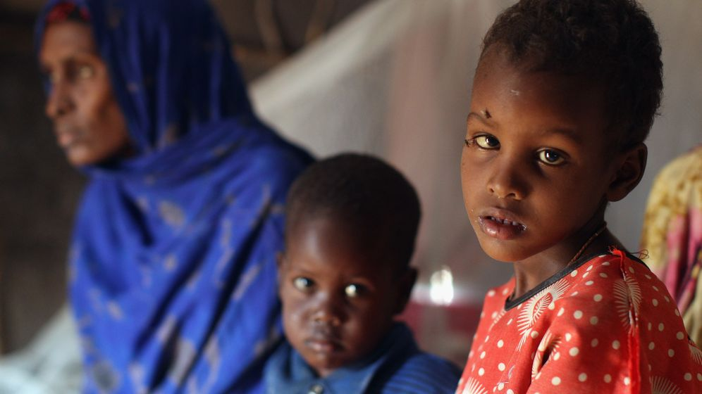 Somalia, Äthiopien, Kenia: Das Hunger-Drama von Ostafrika