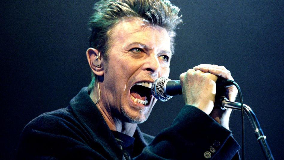 David Bowie in Wien (Archiv): Der Brite gehört zu den erfolgreichsten Sängern der Popgeschichte