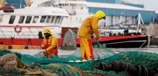 Brexit-Streit um Fangrechte: Frankreich setzt britisches Fischerboot fest