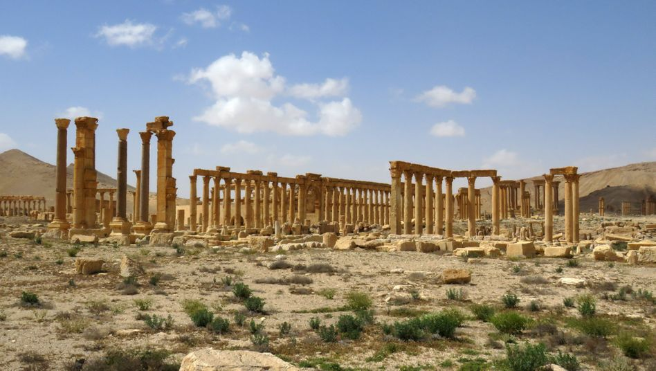 Antike Ruinen in Palmyra