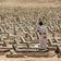 Uno nennt Lage im Jemen »schlimmste Entwicklungskrise der Welt«