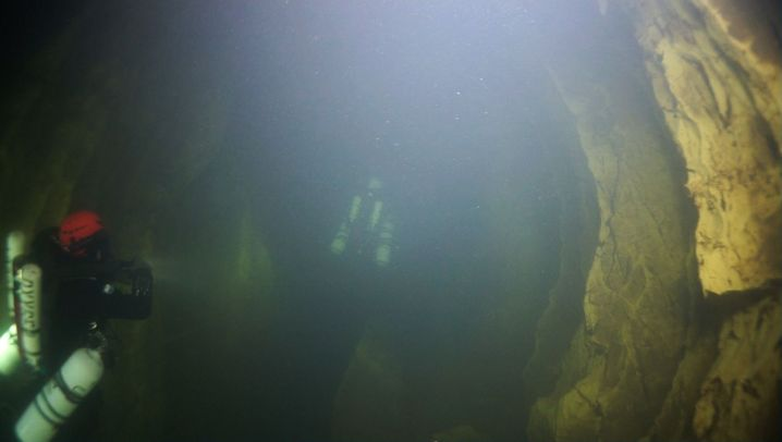 """Höhlenfische: """"Leichenmäßig blass"""""""