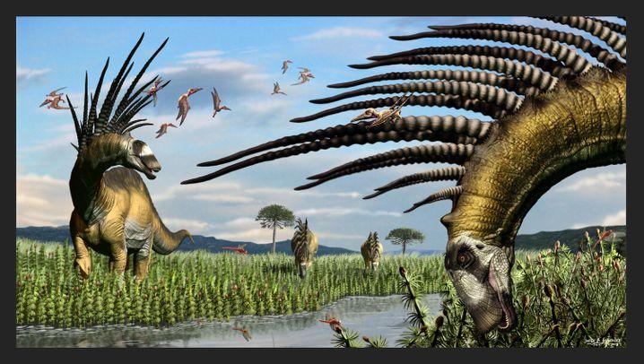 Bajadasaurus pronuspinax: Dinos mit Halsschmuck