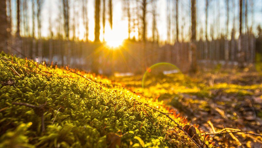 Reise-Highlights bei Instagram: Nordisch by nature