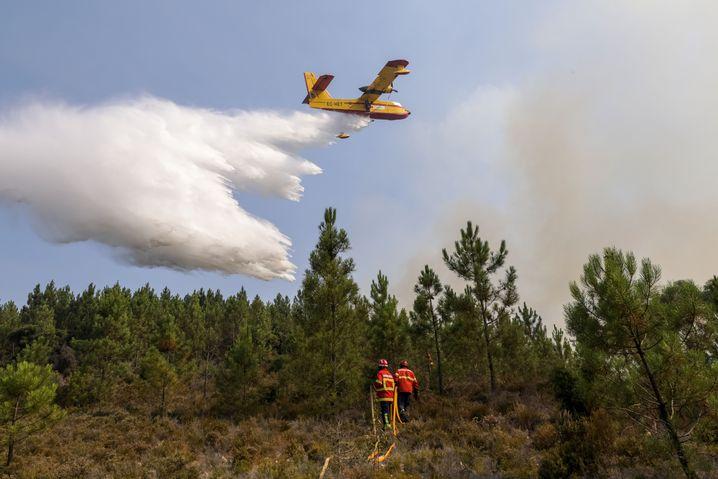 Sarnada im Zentrum Portugals: L??schflugzeug im Einsatz