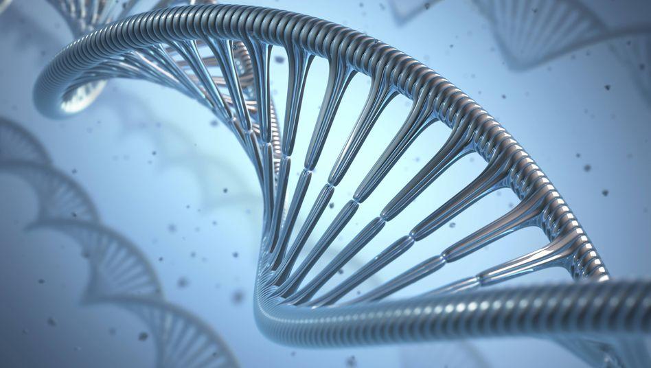 Speicherplatz für Erbinformationen: Vom Computer generierte Darstellung einer DNA-Doppelhelix