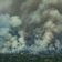 Brasilianische Firmen machen Druck gegen Regenwaldzerstörung