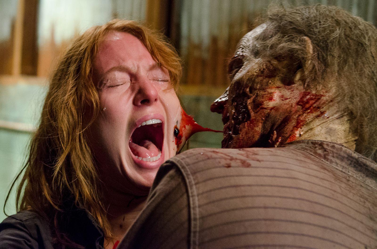 EINMALIGE VERWENDUNG Serie/ Walking Dead