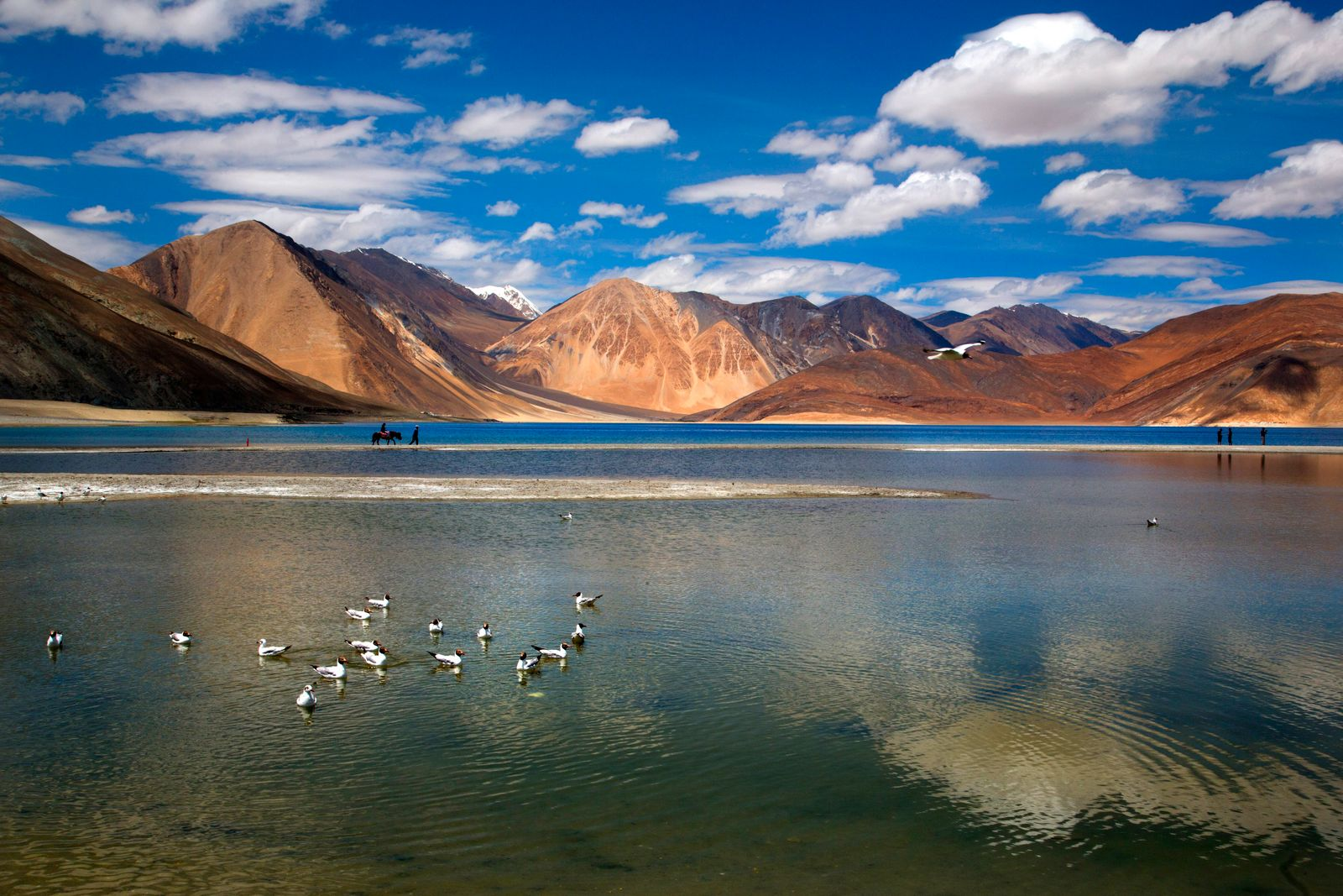 AP Explains China India Border Tensions