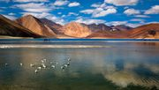 Indien und China wollen Grenzstreit friedlich beilegen