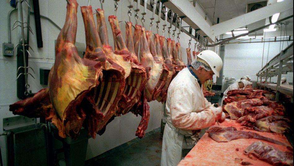 Pferdefleisch: In vielerlei Hinsicht gesünder als Rindfleisch