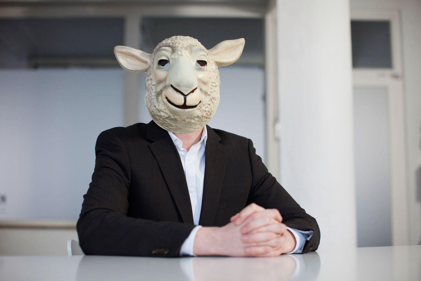 Schaf im Büro