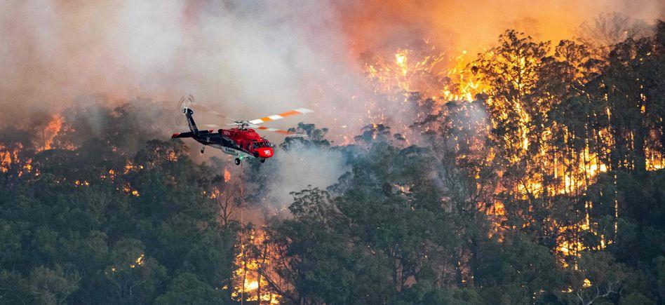 """Hubschrauber nahe Bairnsdale (Victoria): """"Das ist der Geist, den wir als Australier feiern können"""""""