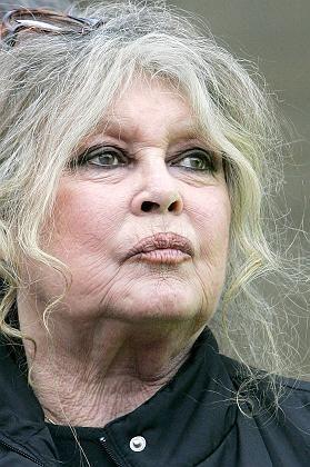 Aktivistin Bardot: Strafe wegen Volksverhetzung