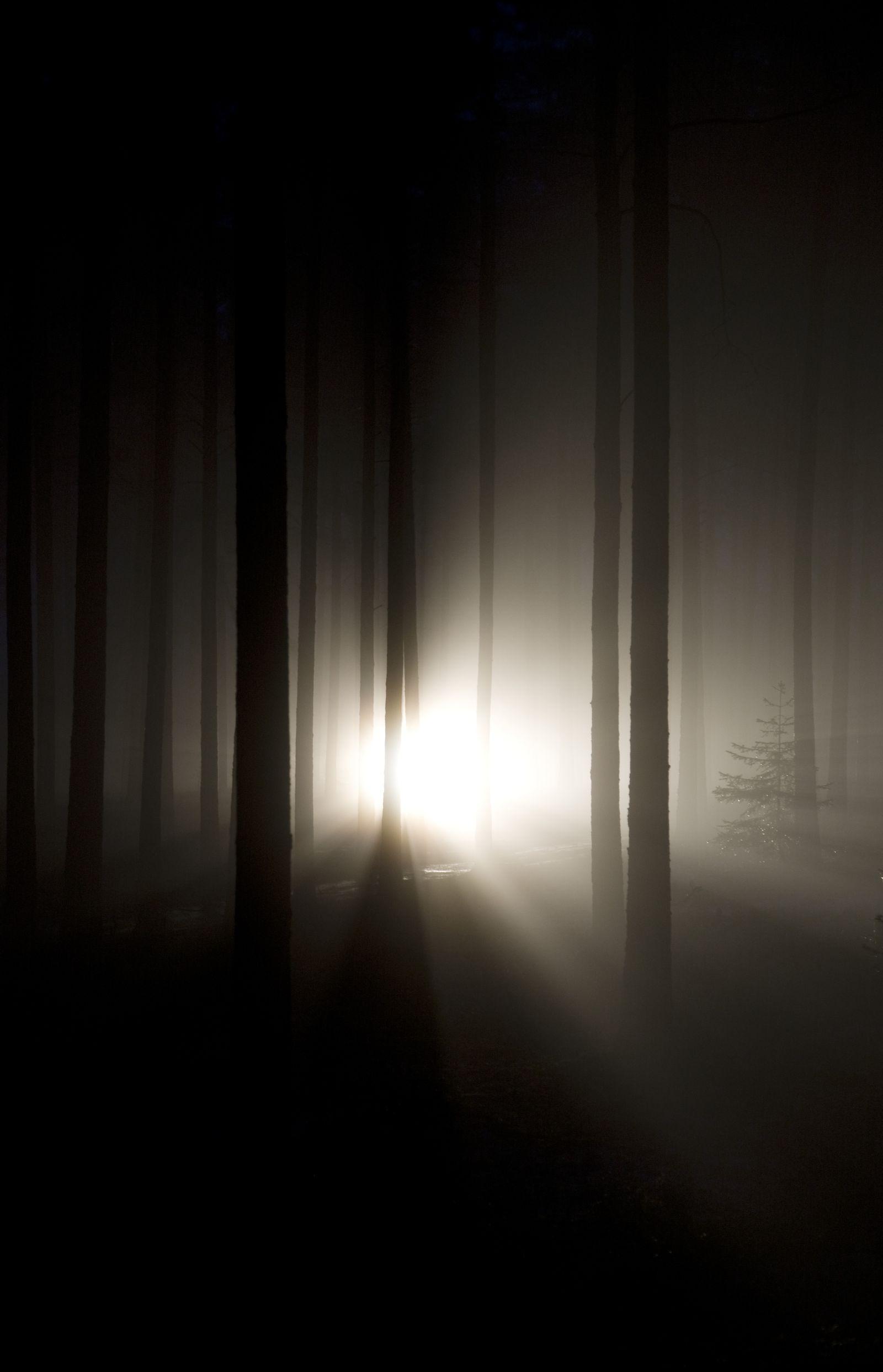 NICHT MEHR VERWENDEN! - Licht / Nahtod