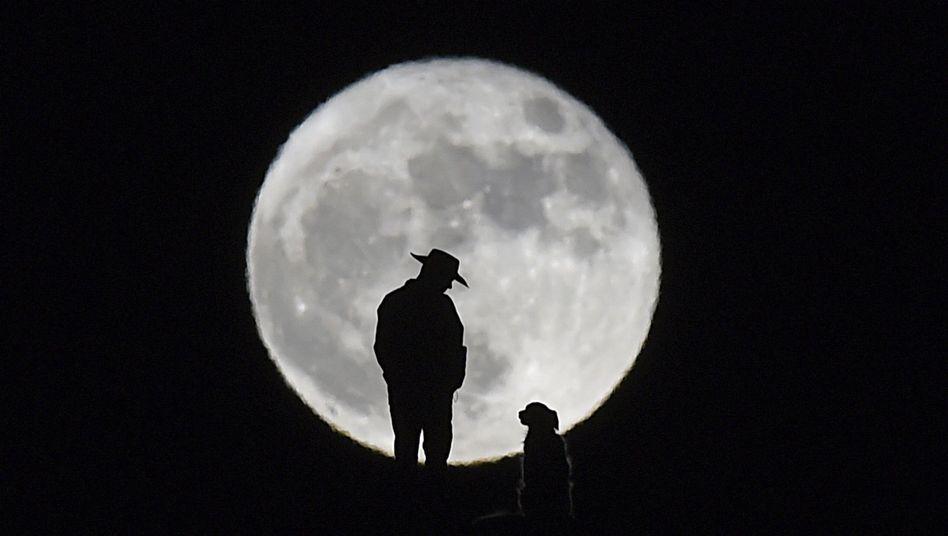 Blick in den Nachthimmel: Ist da wer?