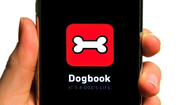 Auf den Hund gekommen: Dogbook ist Facebook für tierisch Interessierte