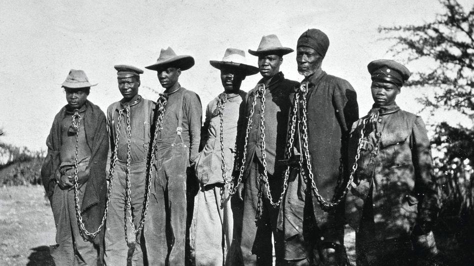 Schonungsloser Umgang: Herero-Gefangene, Deutsch-Südwestafrika, um 1904