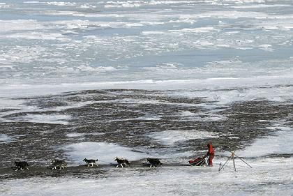 An Alaskan man drives a dog team along the Bering Sea. Russia says it is planning a tunnel to connect Siberia to Alaska across the Bering Strait.