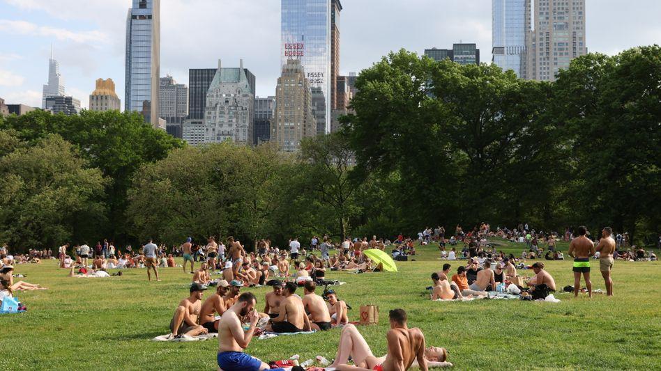 Central Park in New York (Archivbild)