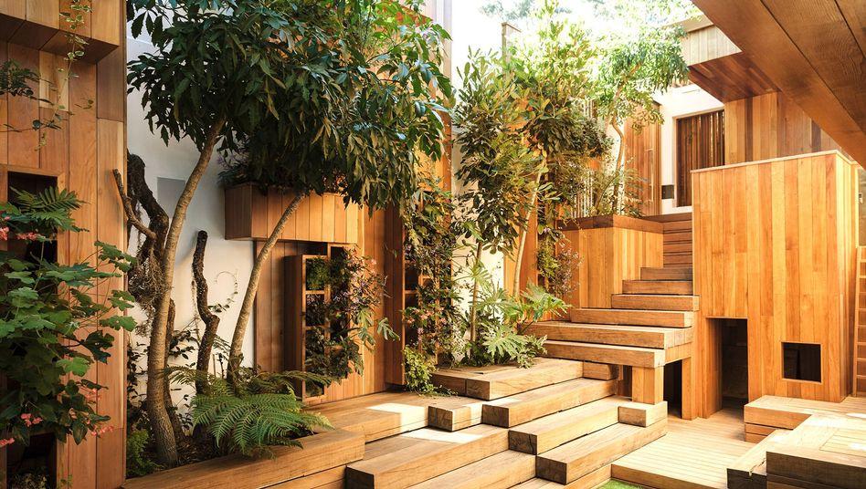 Eine neue Lust auf Holz ist in der Architekturszene zu beobachten