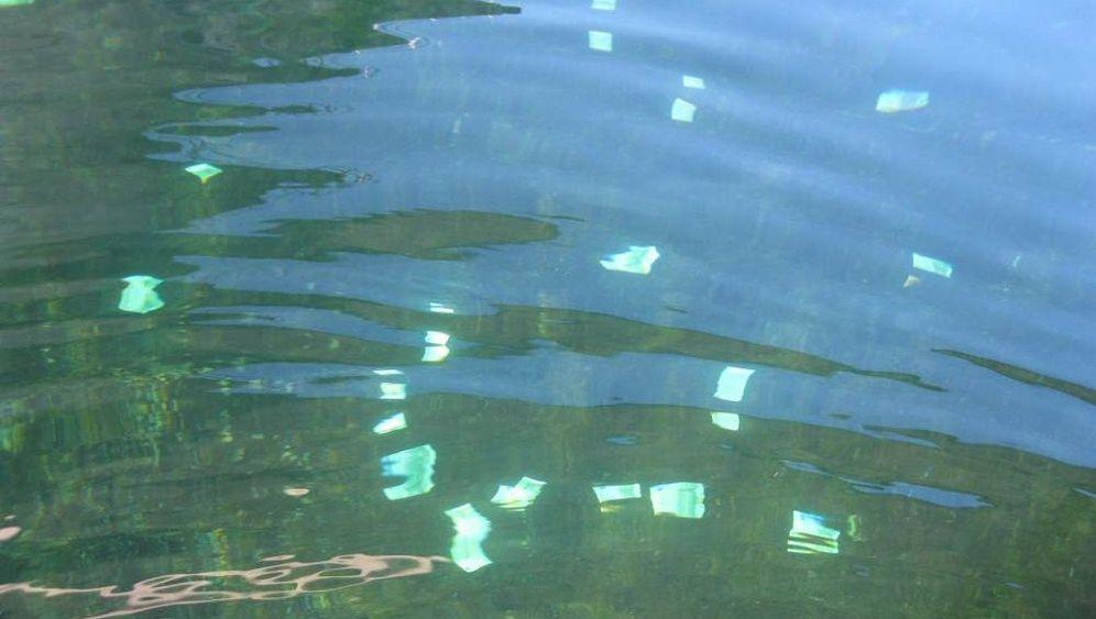 Geldfund in der Donau: Nasser Jackpot