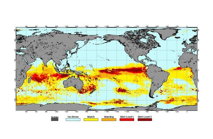 Korallen unter Stress: Eine Karte aus dem April.