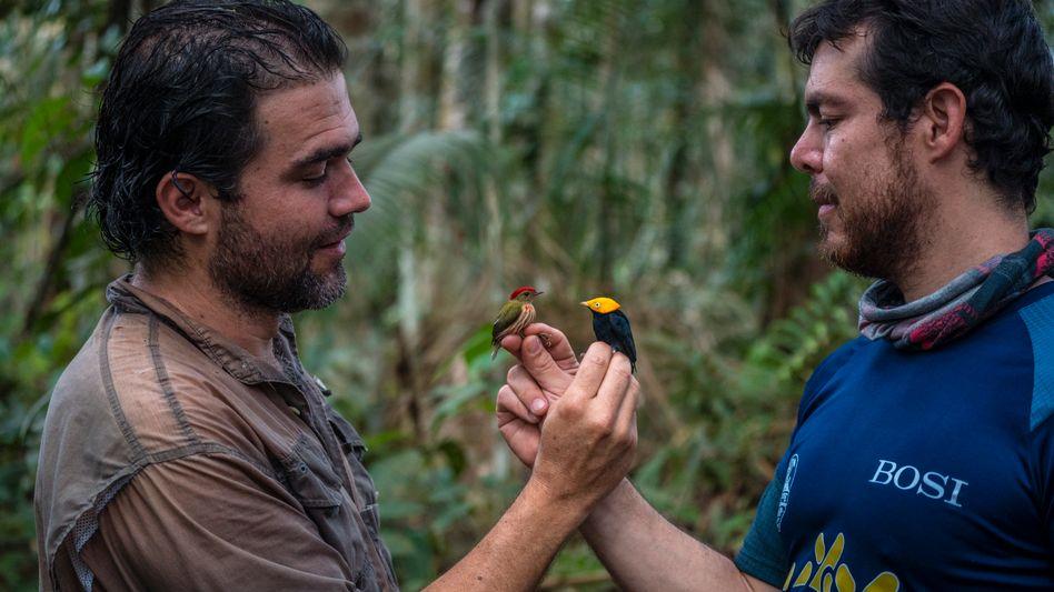 Der Biologe und Vogelkundler Diego Calderón (l.) mit einem Exkursionsteilnehmer im kolumbianischen Urwald (2018)