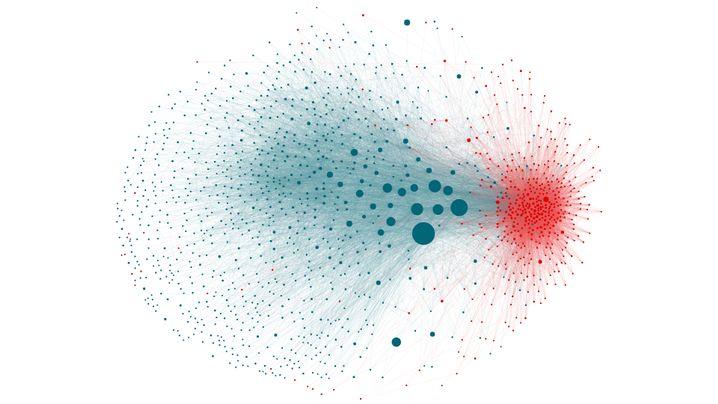 Der Datensatz umfasste etwa 1750 Tweets von etwa 1400 deutschen Accounts, die im Frühjahr 2017 innerhalb weniger Tage über eine bestimmte Fake News getwittert haben. Jeder Punkt stellt einen Twitter-Account dar. Je größer der Punkt, desto mehr Follower hat der Account. Rot markiert sind Nutzer, die die Fake News verbreitet haben. Blau markierte Nutzer haben die Richtigstellung verbreitet. Wenn Accounts sich gegenseitig folgen, sind die Punkte miteinander verbunden und liegen enger zusammen.