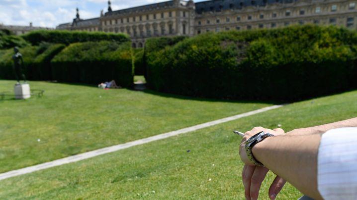 Paris: Kein blauer Dunst für grüne Lungen