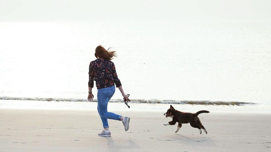 Spaziergang mit Hund Raus aus dem Körbchen