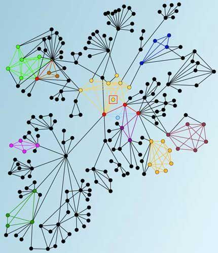 Teil des Telefon-Netzwerks: Intensivere Beziehungen sind gelb gekennzeichnet