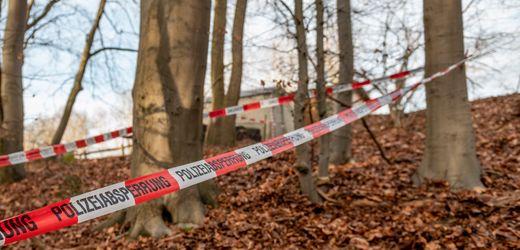"Erddepot in Seevetal: Erste Auswertung deutet auf Bunker der ""Revolutionäre Zellen"" hin"