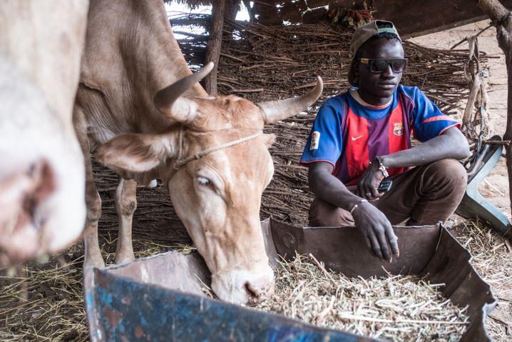 Mamadou Bah in Gambia