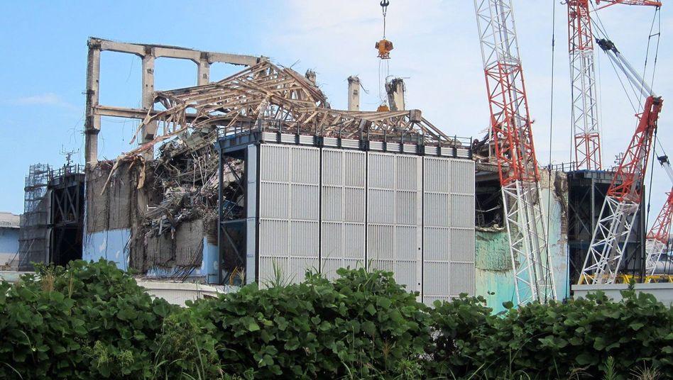 Ruine des AKW Fukushima (September 2012): Uno geht von keinem erhöhten Krebsrisiko aus