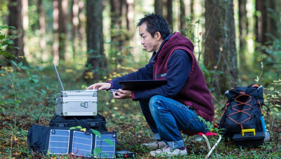 Forscher im Wald - mit solarbetriebenen Geräten