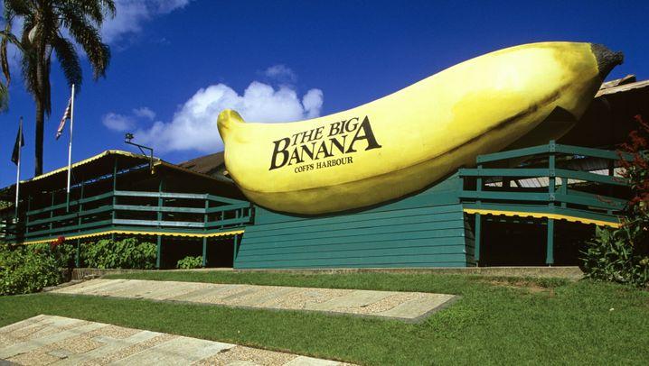 """Fotostrecke: Die """"Big Things"""" von Australien"""